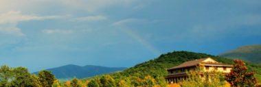 The Dharmashri Online Portal: A Precious Resource for the Sangha